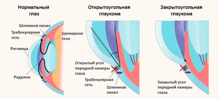 Глазные капли Арутимол: инструкция по применению и отзывы
