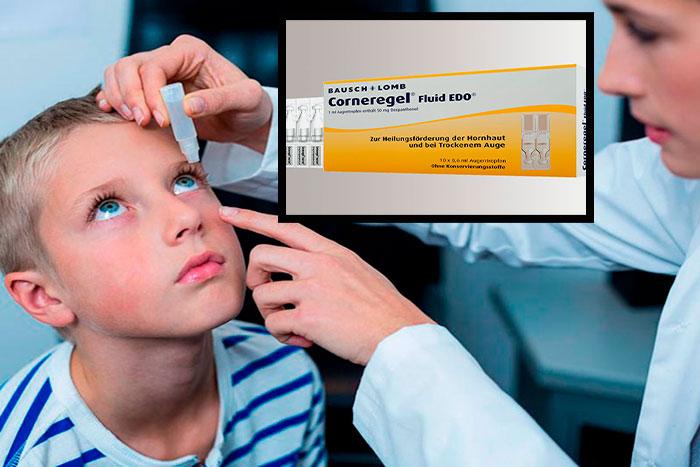 Как применять глазные капли Корнерегель: инструкция и отывы